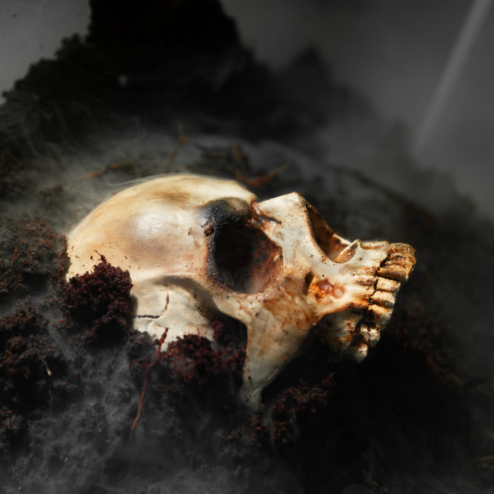 Human skull on the wet soild with smoke flowing closeup